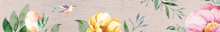 Zoma-creative-classroom-banner2